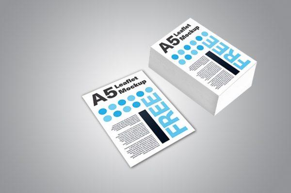 Broşür Çift Yön Renkli YM-A5